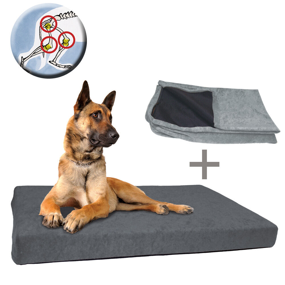 Hondenbed DOG ORTHO