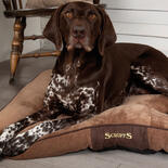 Hondenkussen Scruffs® Chester - Chocolate -