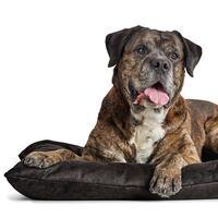HUNTER hondenkussen Bologna, kleur: zwart