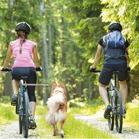 Walky-Dog Plus, de derde hand aan de fiets