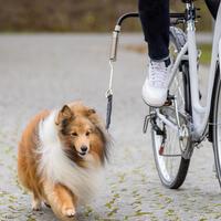 Fietsbeugel 'Biker'