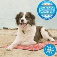 Koel-ligmatten voor honden, kleur: rood