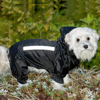Honden-overall