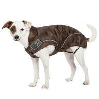 DogBite-regenjack kleur: bruin