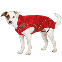 DogBite-regenjack kleur: rood