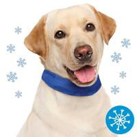 Schecker-koelhalsband voor honden