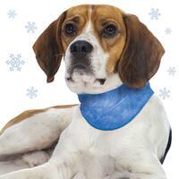 Schecker-koelsjaaltje voor honden