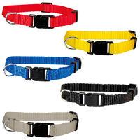 Puppy-halsbanden: voor een halsomtrek van 19-32 cm, 10 mm breed