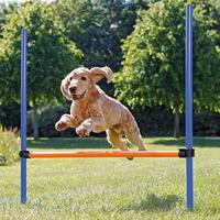 Hordenset voor agility